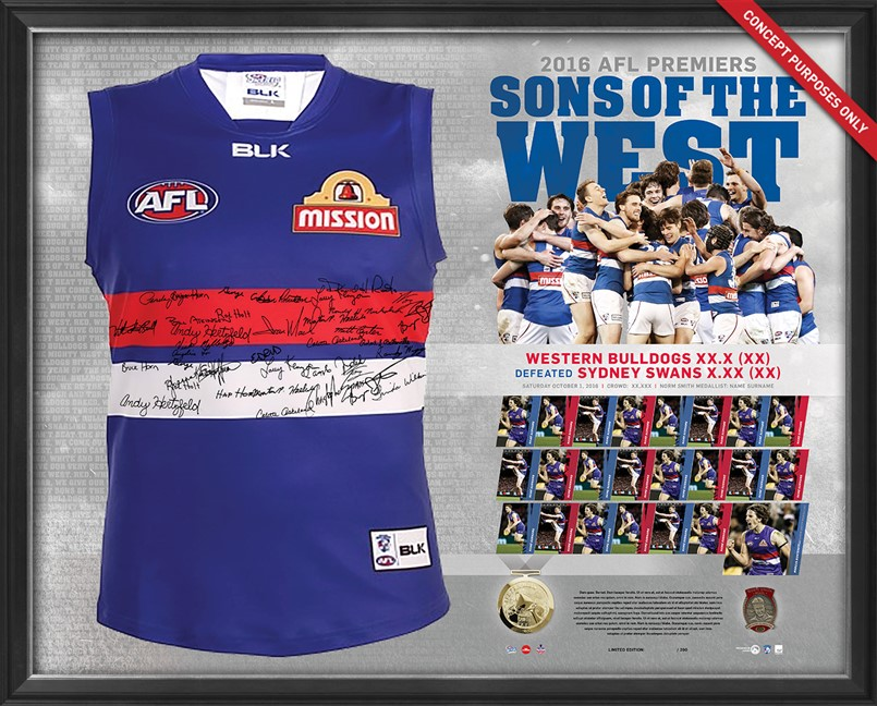 1.AFL 2016 Premiership Team Signed Guernsey MOCK Dogs