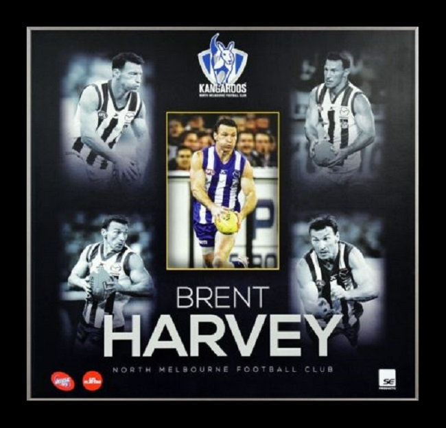 BRENT HARVEY PLAYER