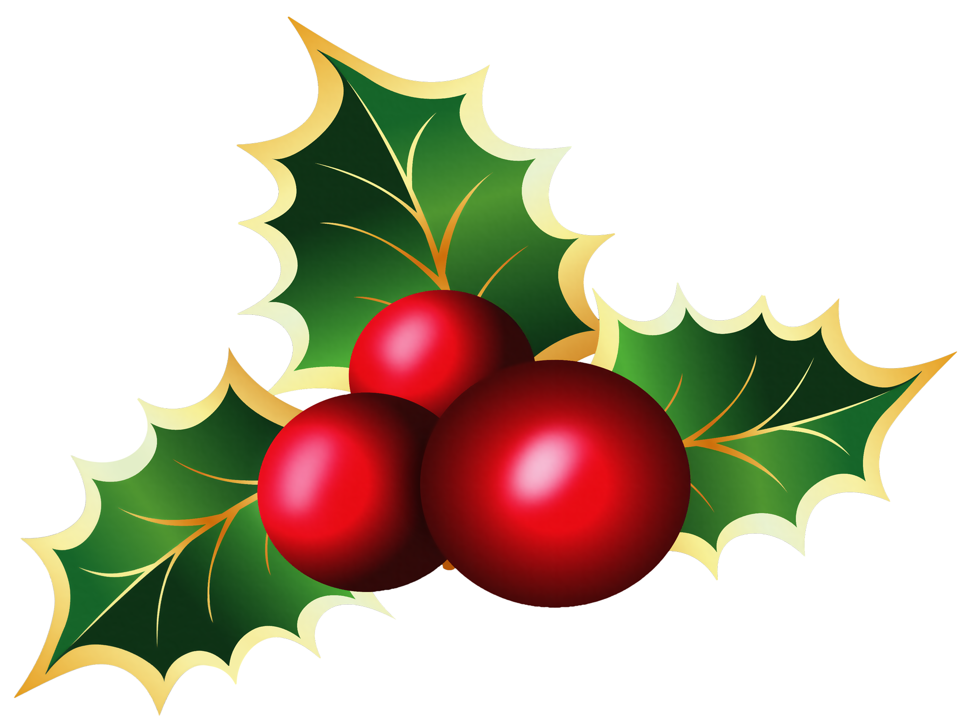 Transparent Christmas Mistletoe PNG Picture