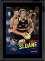 ADELAIDE_CROWS_M_5029bb91de863.jpg