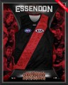 ESSENDON_BOMBERS_4d980194be3f7.jpg