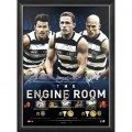 Engine Room Geelong cats