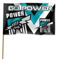 PORT_POWER_FLAG__51257fcca74d5.jpg
