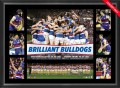 S4674-AFL-2016-Premiership-Tribute-Frame-bulldogs