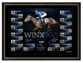 Winx Road to the Record